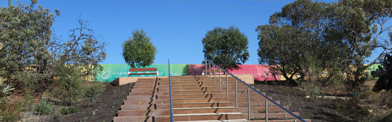Vivente - Hammond Park Climb