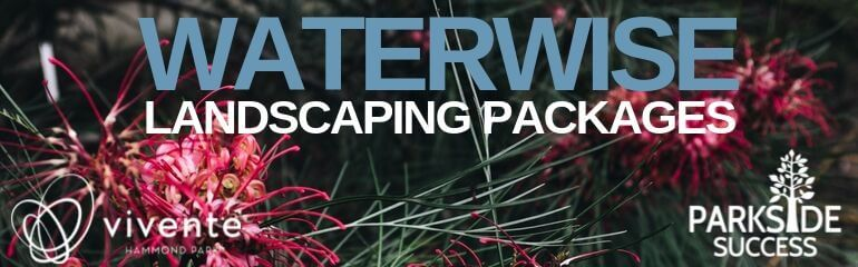Waterwise Landscape Packages at Vivente & Parkside Success