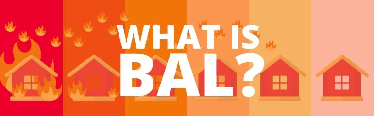 What is BAL?